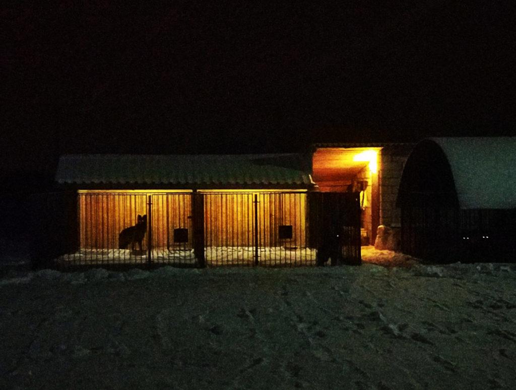 Гостиница для собак в Смоленске